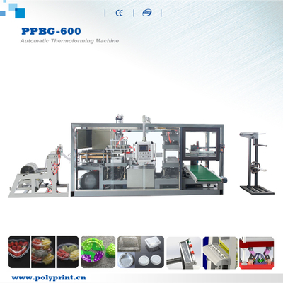Plastic PLA/PVC/PS/Pet Cup Lid/Cover Fast Food Containers Egg Tray Thermoforming Forming Making Machine